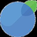 InvoiceBerry integration logo