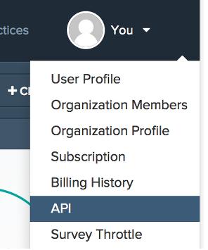 locate your API key