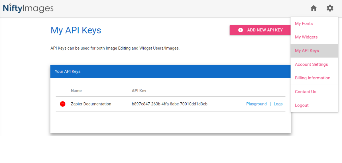 NiftyImages API Key in account
